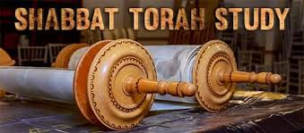 CONTACT TorahStudy@TempleSinaiPBC.org for Information Torah Portion T'tzaveh Facilitated by Bob Altabet    Sponsored by Nirit Weiser in Honor of Judy Shumaker's Birthday